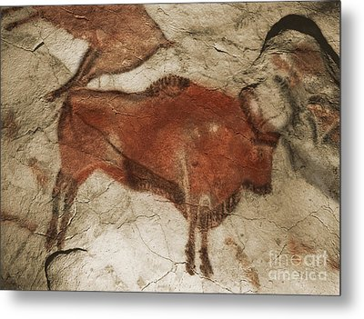 Altamira Cave Paintings Metal Print by Photo Researchers