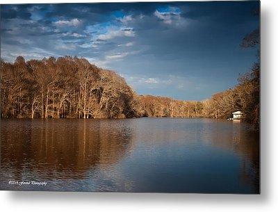 Apalachicola River  Metal Print by Debra Forand