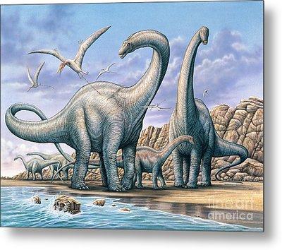 Apatosaurus Group On Beach Metal Print
