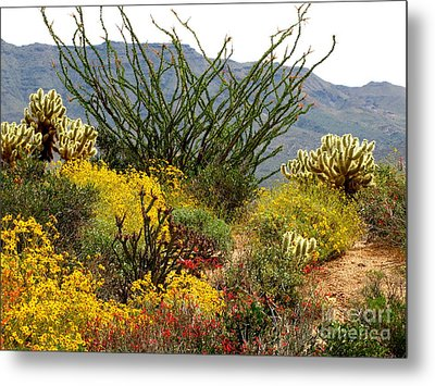 Arizona Springtime Metal Print by Marilyn Smith