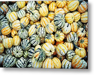 Metal Print featuring the photograph Autumn Gourds by Crystal Hoeveler
