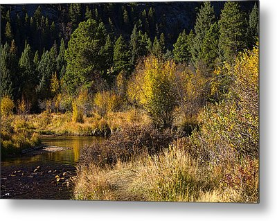 Autumn In The Rockies Metal Print by Anne Rodkin