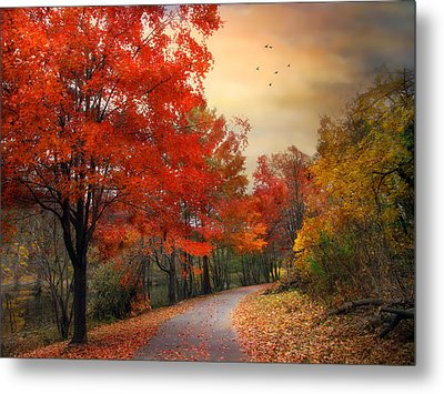 Metal Print featuring the photograph Autumn Maples by Jessica Jenney