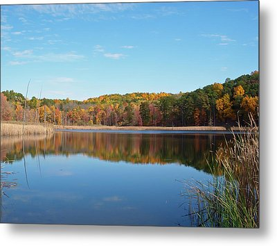 Metal Print featuring the photograph Autumn Pond by Aimee L Maher Photography and Art Visit ALMGallerydotcom
