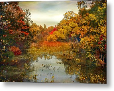 Autumn Wetlands Metal Print by Jessica Jenney