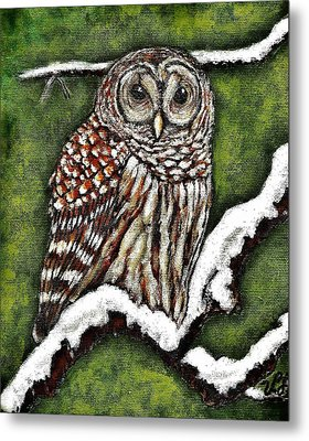 Metal Print featuring the painting Barred Owl by VLee Watson