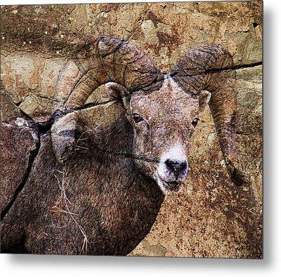 Bighorn Rock Metal Print by Steve McKinzie