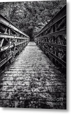 Bridge Leading Into The Bamboo Jungle Metal Print by Edward Fielding