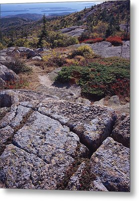 Cadillac Mountain Metal Print