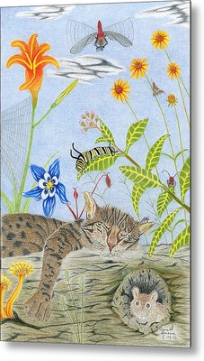 Cat And Mouse Metal Print