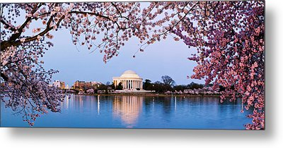 Cherry Blossom Tree With A Memorial Metal Print by Panoramic Images