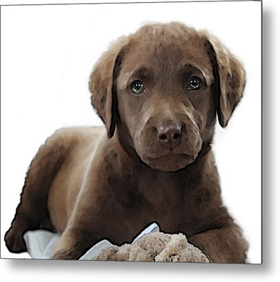 Chessie Metal Print by William Love