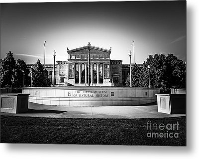 Chicago Field Museum In Black And White  Metal Print