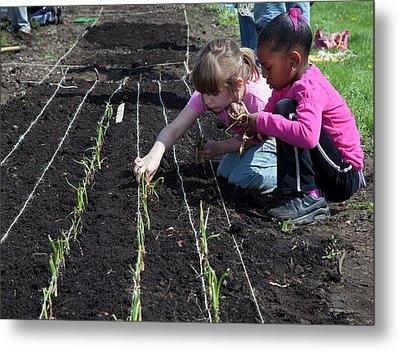 Children At Work In A Community Garden Metal Print