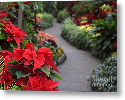Christmas Garden Metal Print by Charline Xia