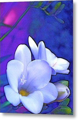 Color 4 Metal Print by Pamela Cooper