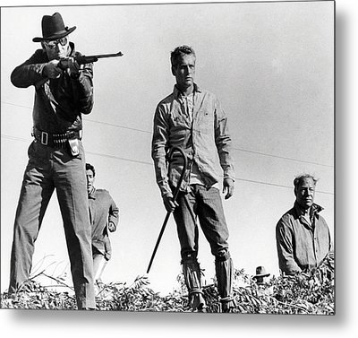 Cool Hand Luke  Metal Print