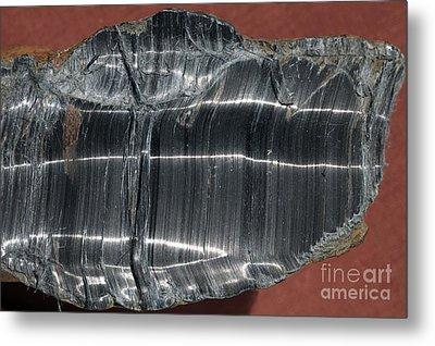 Crocidolite Asbestos Mineral Metal Print by Dirk Wiersma
