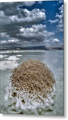 Dead Sea Monuments Of Nature  Metal Print by Isaac Silman