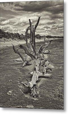 Desolate Metal Print by Marcia Colelli