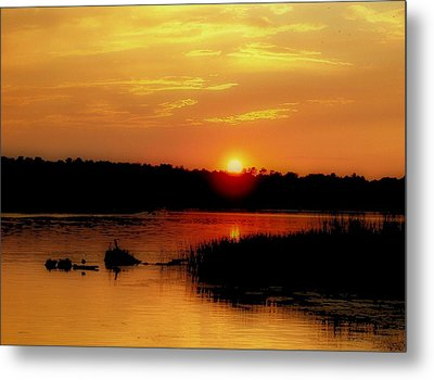 Discovery Metal Print by Tom Druin