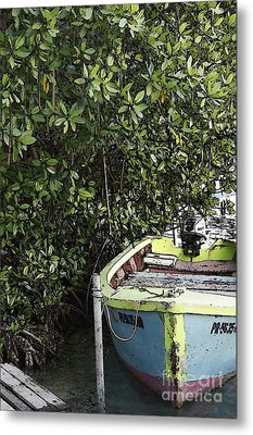 Metal Print featuring the photograph Docked By The Mangrove Trees by Lilliana Mendez