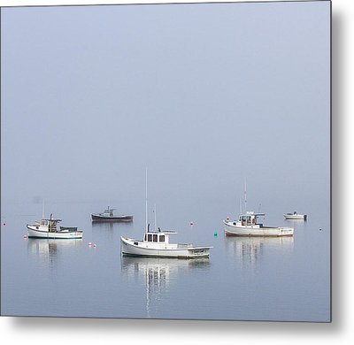 Down East Maine Metal Print by Trace Kittrell