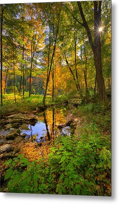 Early Autumn Metal Print by Bill Wakeley