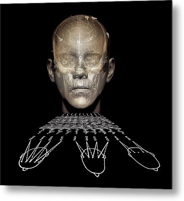 Electroencephalography Metal Print by Zephyr