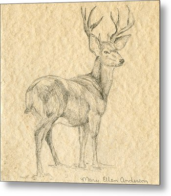 Metal Print featuring the drawing Elk by Mary Ellen Anderson