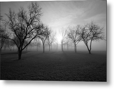 Endless Metal Print by Leanna Lomanski