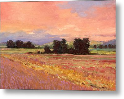 Field Glory Metal Print by J Reifsnyder