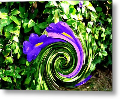 Flower Abstract Study-2 Metal Print by Anand Swaroop Manchiraju