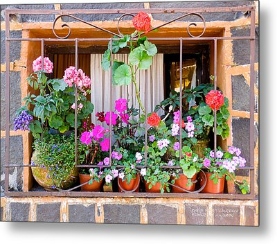 Flowers In A Mexican Window Metal Print by David Perry Lawrence