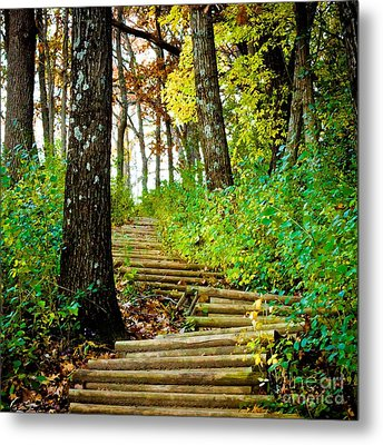 Metal Print featuring the photograph Garvin Heights Stairway by Kari Yearous