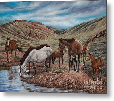 Gathering At Diablo Canyon Metal Print by Ricardo Chavez-Mendez