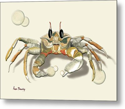Ghost Crab Metal Print by Anne Beverley-Stamps