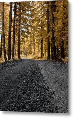 Golden Pines Metal Print