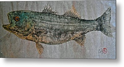 Gyotaku - Striped Bass - Rock Fish - Striper Metal Print