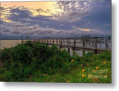 Henderson Point Metal Print by Maddalena McDonald