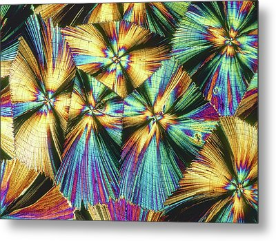 Human Growth Hormone Crystals Metal Print by Alfred Pasieka