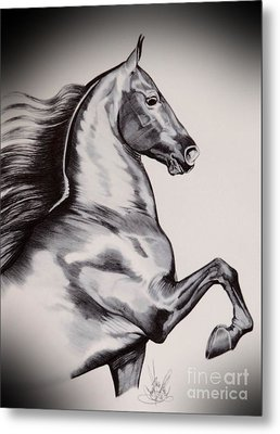 Into The Wind - Saddlebred Metal Print by Cheryl Poland