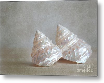 Metal Print featuring the photograph Iridescent Shells by Aiolos Greek Collections
