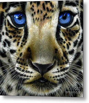 Jaguar Cub Metal Print by Jurek Zamoyski