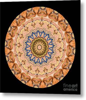 Kaleidoscope Anatomical Illustrations Seriesi Metal Print by Amy Cicconi