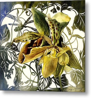 Ladyslipper Orchid Metal Print by Alfred Ng