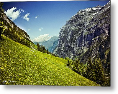 Metal Print featuring the photograph Lauterbrunnen Valley In Bloom by Jeff Goulden