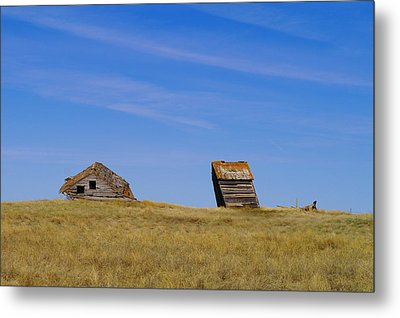Leaning Into The Years Metal Print by Jeff Swan