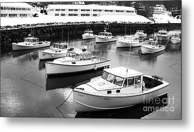 Lobster Boats Metal Print by Christy Bruna