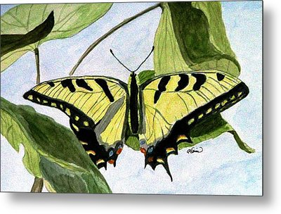 Metal Print featuring the painting Male Eastern Tiger Swallowtail by Angela Davies